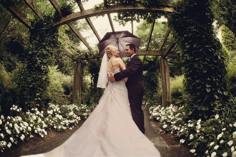 Weddings 1